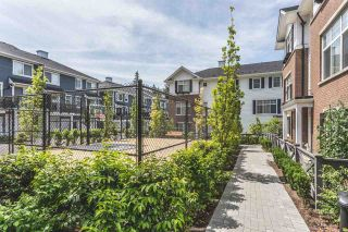"""Photo 18: 74 16458 23A Avenue in Surrey: Grandview Surrey Townhouse for sale in """"ESSENCE at the HAMPTONS"""" (South Surrey White Rock)  : MLS®# R2088665"""