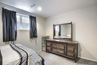 Photo 31: 367 Maitland Crescent NE in Calgary: Marlborough Park Detached for sale : MLS®# A1093291