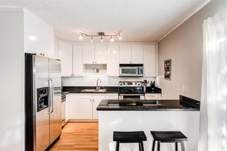 Photo 20: 508 Mckinnon Drive NE in Calgary: Mayland Heights Detached for sale : MLS®# A1154496