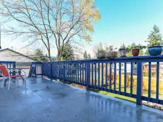 Photo 45: 2800 Windermere Ave in CUMBERLAND: CV Cumberland House for sale (Comox Valley)  : MLS®# 829726