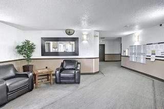 Photo 37: 110 11 Dover Point SE in Calgary: Dover Apartment for sale : MLS®# A1096781