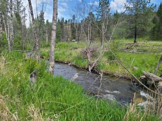 Photo 5: 1280 RENSCH ROAD: Loon Lake Lots/Acreage for sale (South West)  : MLS®# 162650