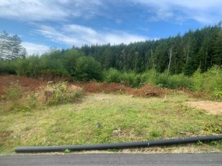 Photo 1: Lot 1 Tootouch Pl in TAHSIS: NI Tahsis/Zeballos Land for sale (North Island)  : MLS®# 844598