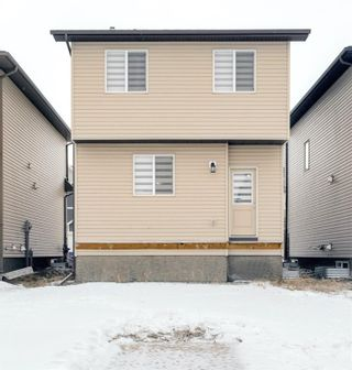 Photo 25: 52 Reunion Loop NW: Airdrie Detached for sale : MLS®# A1063482