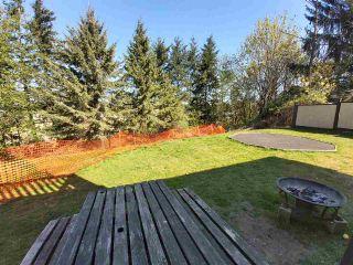 Photo 36: 31447 WINTON Avenue in Abbotsford: Poplar House for sale : MLS®# R2566181