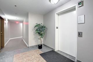 Photo 34: 1113 11 Chaparral Ridge Drive SE in Calgary: Chaparral Apartment for sale : MLS®# A1145437