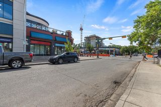 Photo 25: 338 24 Avenue SW in Calgary: Mission Retail for sale : MLS®# A1142167