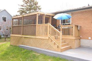 Photo 6: B49 Howard Avenue in Brock: Beaverton House (Bungalow-Raised) for sale : MLS®# N3487879