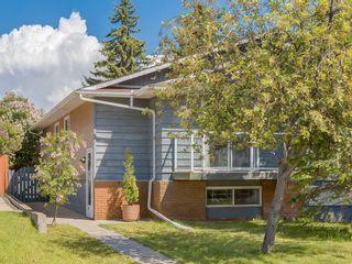 Photo 1: 20 FALCONRIDGE Place NE in Calgary: Falconridge Semi Detached for sale : MLS®# C4302854
