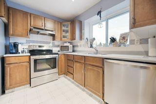 Photo 15: 71 WOODCREST AV: St. Albert House for sale : MLS®# E4185751