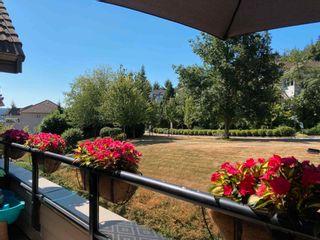 "Photo 21: #507 160 SHORELINE Circle in Port Moody: College Park PM Condo for sale in ""Shoreline Villas"" : MLS®# R2603450"