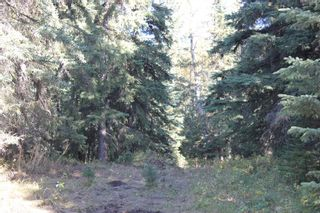 Photo 31: ON Township Road 355A: Rural Red Deer County Land for sale : MLS®# A1039276