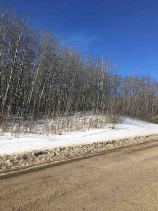 Photo 3: township62 RG RD 411: Rural Bonnyville M.D. Rural Land/Vacant Lot for sale : MLS®# E4100378