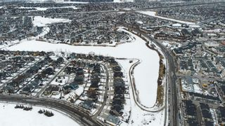 Photo 50: 20 Elgin Estates View SE in Calgary: McKenzie Towne Detached for sale : MLS®# A1076218