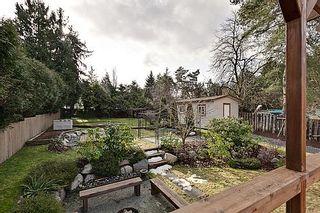 Photo 4: 22604 124th Ave, Maple Ridge V928483 - House/Single Family For Sale