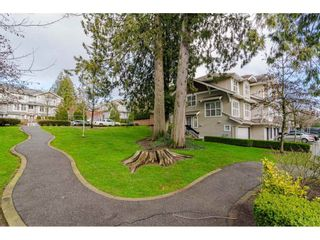 Photo 4: 100 20460 66 AVENUE in Langley: Willoughby Heights Townhouse for sale : MLS®# R2530326
