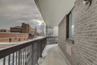 Photo 24: 203 215 14 Avenue SW in Calgary: Beltline Apartment for sale : MLS®# A1092010