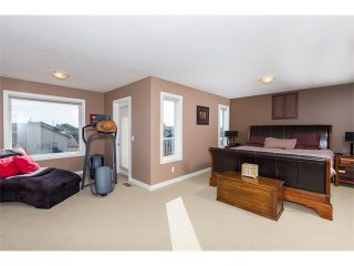 Photo 19: 241 Springmere Way: Chestermere House for sale : MLS®# C4005617
