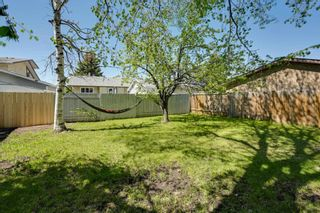 Photo 45: 10223 171A Avenue in Edmonton: Zone 27 House for sale : MLS®# E4255487