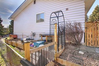 Photo 49: 6115 Dalcastle Crescent NW in Calgary: Dalhousie Detached for sale : MLS®# A1096650