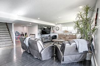Photo 37: 176 WILLOWMERE Way: Chestermere Detached for sale : MLS®# A1153271