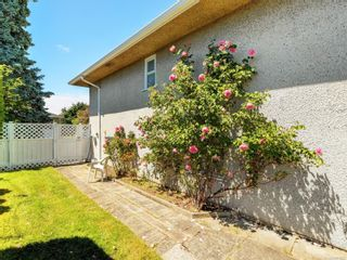 Photo 21: 3205 Carman St in : SE Camosun House for sale (Saanich East)  : MLS®# 878227