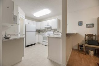 Photo 7: #105 45 GERVAIS RD: St. Albert Condo for sale : MLS®# E4184216