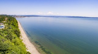 Photo 10: 13048 13 AVENUE in Surrey: Crescent Bch Ocean Pk. Land for sale (South Surrey White Rock)  : MLS®# R2534417