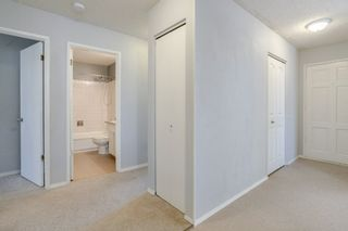 Photo 12: 3452 39 Street in Edmonton: Zone 29 House for sale : MLS®# E4231480