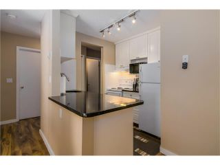 Photo 7: 208 835 19 Avenue SW in Calgary: Lower Mount Royal Condo for sale : MLS®# C4034765