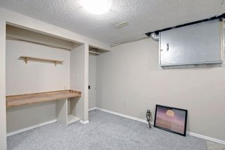 Photo 29: 14231 30 Street in Edmonton: Zone 35 House for sale : MLS®# E4261642