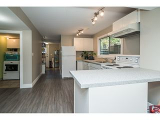 "Photo 21: 33537 BLUEBERRY Drive in Mission: Mission BC House for sale in ""Hillside"" : MLS®# R2505733"