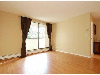 """Photo 14: 107 8870 CITATION Drive in Richmond: Brighouse Condo for sale in """"CARTWELL MEWS"""" : MLS®# V1036917"""