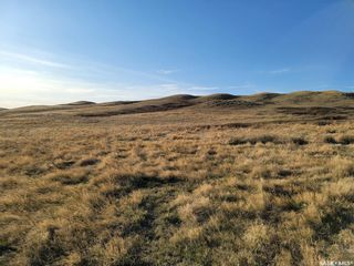 Photo 9: 1,118 Acres RM Mountain View #318 in Mountain View: Farm for sale (Mountain View Rm No. 318)  : MLS®# SK837300