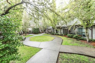 "Photo 20: 26 9036 208 Street in Langley: Walnut Grove Townhouse for sale in ""Hunter's Glen"" : MLS®# R2159058"