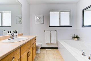 Photo 20: 24017 109 Avenue in Maple Ridge: Cottonwood MR House for sale : MLS®# R2615722