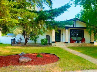Photo 42: 124 Birch Crescent: Wetaskiwin House for sale : MLS®# E4256808