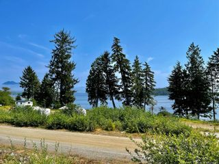 Photo 4: 1154 2nd Ave in : PA Salmon Beach House for sale (Port Alberni)  : MLS®# 883575