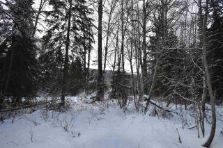 """Photo 23: 3 3000 DAHLIE Road in Smithers: Smithers - Rural Land for sale in """"Mountain Gateway Estates"""" (Smithers And Area (Zone 54))  : MLS®# R2280165"""
