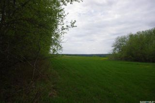 Photo 29: Weiss Lakefront Acreage in Big River: Farm for sale : MLS®# SK834154