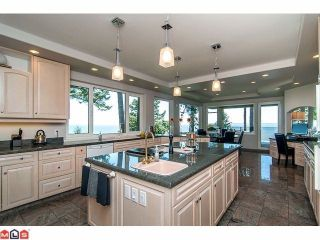Photo 5: 1455 126A Street in Surrey: Crescent Bch Ocean Pk. House for sale (South Surrey White Rock)  : MLS®# F1227438