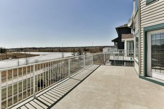 Photo 28: 49 SADDLECREST Place NE in Calgary: Saddle Ridge House for sale : MLS®# C4179394