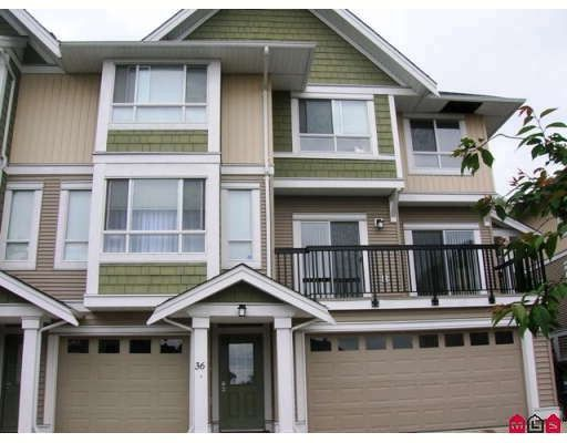 """Main Photo: 36 20159 68TH Avenue in Langley: Willoughby Heights Townhouse for sale in """"Vantage"""" : MLS®# F2818378"""
