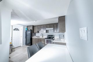 Photo 24: 280 Rundlefield Road NE in Calgary: Rundle Detached for sale : MLS®# A1142021