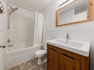 Photo 28: 183 ELGIN Way SE in Calgary: McKenzie Towne Detached for sale : MLS®# A1046358