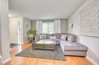 Photo 20: 39 Erin Green Way SE in Calgary: Erin Woods Detached for sale : MLS®# A1118796