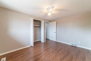 Photo 19: 3224 Dover Crescent SE in Calgary: Dover Semi Detached for sale : MLS®# A1138745