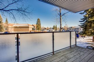 Photo 16: 12 3212 Edenwold Heights NW in Calgary: Edgemont Apartment for sale : MLS®# A1073287