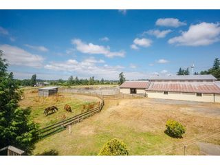 Photo 1: 23063 16 Avenue in Langley: Campbell Valley House for sale : MLS®# R2603383