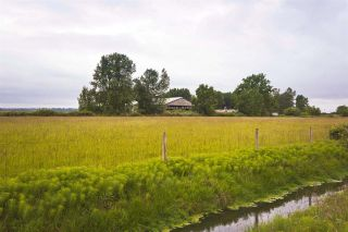 Photo 4: 2990 57B STREET in Delta: Agriculture for sale : MLS®# C8023503